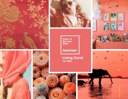 shi studio living coral pantone colour fashion design jewellery